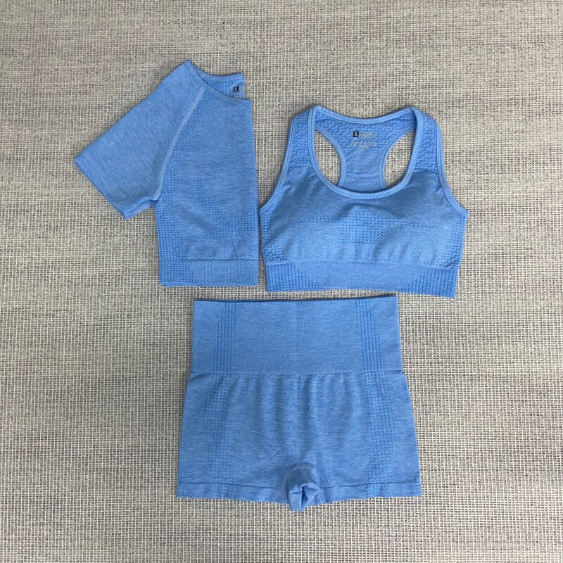 Seamless women yoga fitness sports suits Gym Clothes women Fitness Sport Yoga Yoga Sports Bra + Leggings shorts + short sleeves